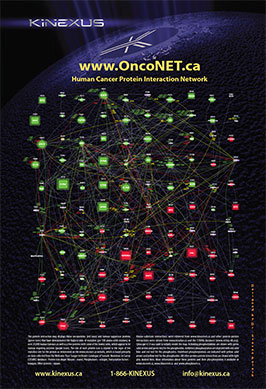 OncoNET.ca Poster